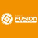 Fusion 2.5+ DLC